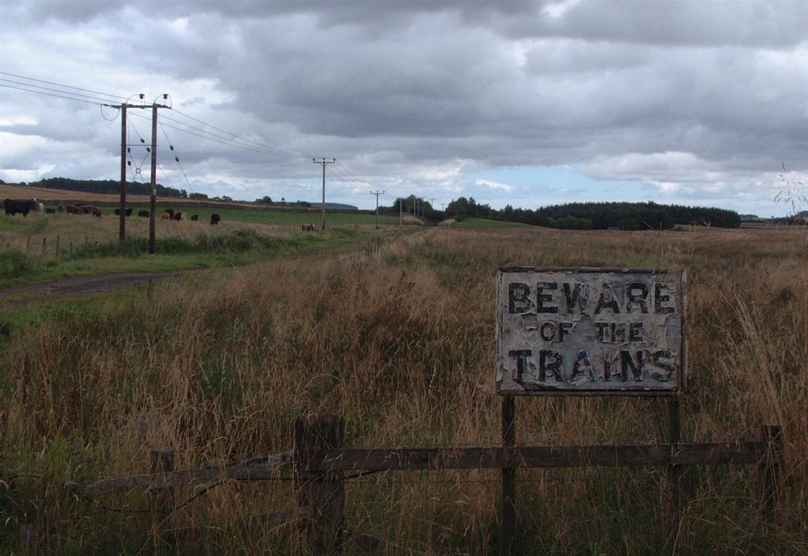 Guide to railway walks is on track to success